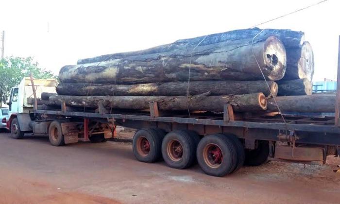 O Sistema Nacional de Controle da Origem dos Produtos Florestais (Sinaflor) reúne o controle da origem da madeira, do carvão e de outros produtos ou subprodutos florestais