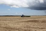 A previsão é que a partir do dia 15 de outubro as chuvas ganhem estabilidade para propiciar condições ideais para o plantio da safra de grãos no Estado