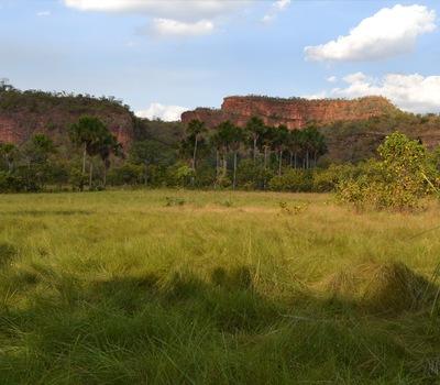 A fazenda está localizada na comunidade Serra Negra