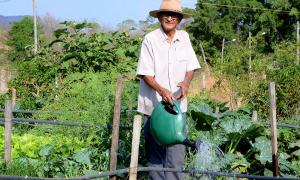 Com 85 anos e uma grande família, 18 netos e 16 bisnetos, o aposentado Adontino Alfredo Lima ressalta que o que produz garante o sustento de toda a sua família