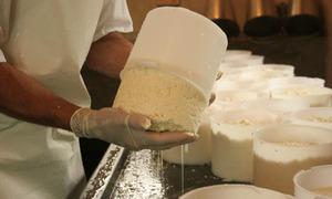 Objetivo é capacitar e atualizar conhecimento sobre normas para regularização de fabricantes de alimentos produzidos por empreendimentos de economia solidária
