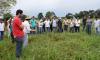 Técnicos do Ruraltins participam de capacitação em tecnologias do Plano de Agricultura de Baixa Emissão de Carbono, com foco na intensificação da produção pastagens