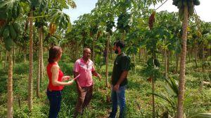 Ruraltins ouviu 150 produtores rurais, entre os meses de agosto e setembro - Governo do Tocantins