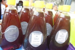 Festa da Mangaba em Goianorte traz produtos in natura e derivados do fruto