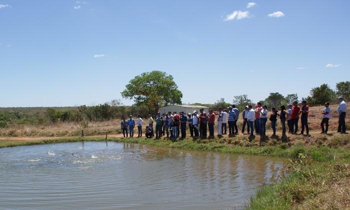 A ideia é discutir os rumos da piscicultura e divulgar as políticas públicas voltadas para o setor