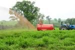 biocombustivel 1 dia de campo fazenda bom tempo fotos MANOEL JUNIOR (29).JPG