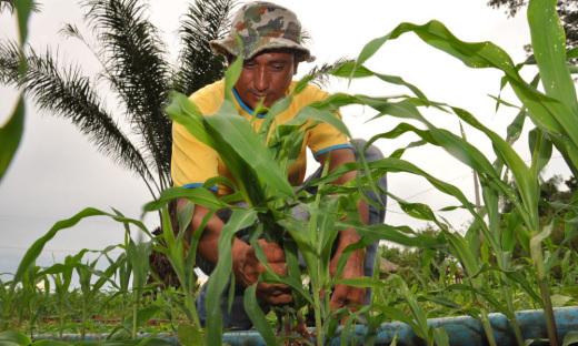 Ruraltins está presente em todo Tocantins