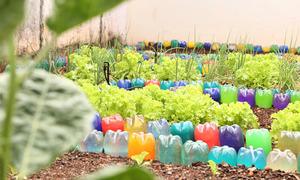 Além da parte pedagógica, os alunos aprendem a ter um novo olhar para o meio ambiente