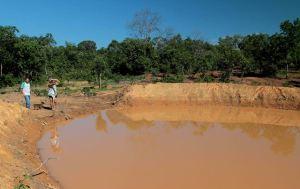 Serão doados cerca de 4 mil alevinos aos agricultores beneficiados com as barraginhas no município de Almas