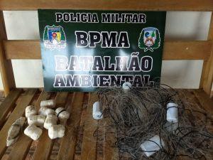 BPMA e Naturatins apreendem produtos ilegais