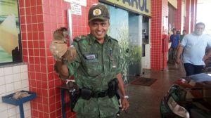 Macaco Sagui é capturado em posto de combustíveis de Palmas