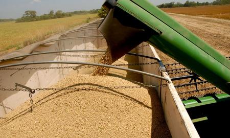 A previsão é de que, nesta safra, o Tocantins ultrapasse os 4,5 milhões de toneladas de grãos, com destaque para a soja