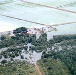 Lavouras atingidas pelo alagamento na região de Formoso do Araguaia