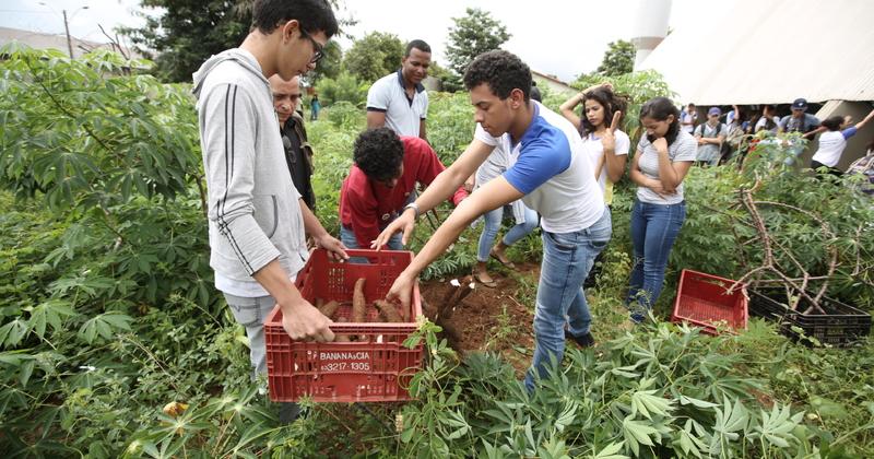Empreendimentos e soluções para a conservação da natureza estão entre os temas que podem ser escolhidos pelos alunos