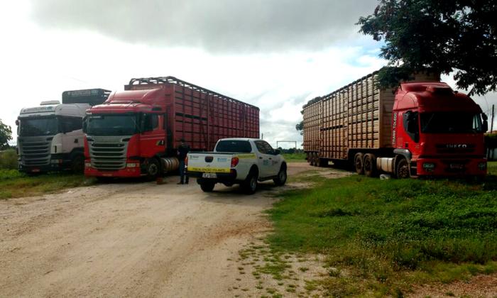 As carretas saíram do município de Araguatins e tentavam deixar o Estado pela travessia da balsa de Sampaio