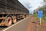 Trecho da TO-134 na região do Bico do Papagaio com asfalto reconstruído