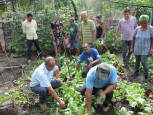 Os profissionais do Ruraltins de Porto Nacional são os primeiros a receber o treinamento