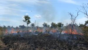 A criação de Brigadas contra incêndio florestal, é uma das ações previstas que o prefeito poderá incrementar