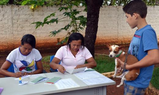 Para este ano, a estimativa é vacinar 260.012 cães e 68.868 gatos