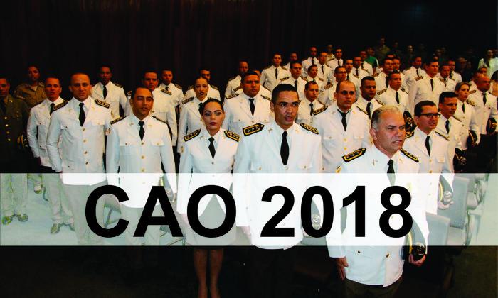 CAO 2018_700x420.jpg