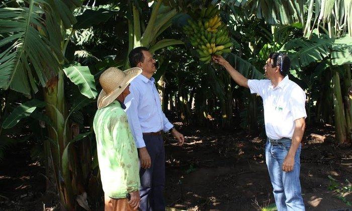 68778-o-projeto-de-irrigacao-sao-joao-teve-inicio-em-2001-e-compreende-a-implantacao-de-infraestrutura-para-hortifrutigranjeiros-e-frutas-lucia-brito_700x420.jpg