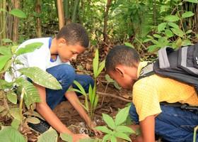 Escolas que desenvolvem projetos ambientais com os estudantes podem concorrer ao prêmio