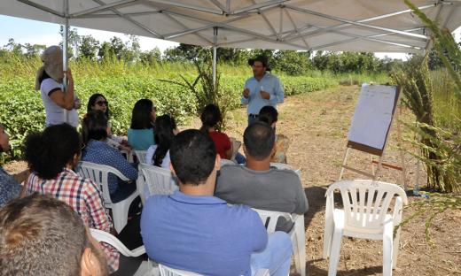 Em três estações, os técnicos explicaram aos produtores e alunos de escolas agrícolas, o passo a passo da produção e as potencialidades econômicas das oleaginosas