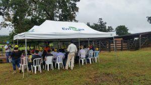 Dia de Campo da bovinocultura na Agroalmas 2018
