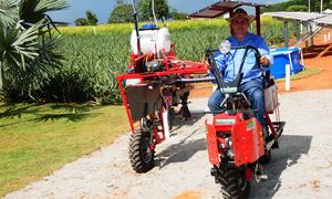 Profissionalização da Agricultura Familiar traz maiores chances do agricultor ser inserido em um mecanismo de comércio mais rentável