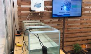 Agrotins mostra nova tecnologia para melhorar qualidade da água - foto Rojas Rhoden (3).jpeg