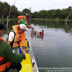 Fiscais retiram rede do rio