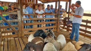 Intercâmbios fazem parte das atividades da extensão rural