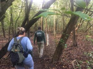 A equipe do Naturatins, ,  esta percorrendo, durante uma semana,  uma trilha de 5 km  no parque do Cantão.