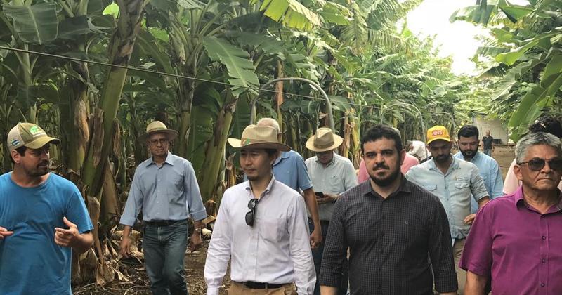 Grupo durante visita a plantação de bananas no projeto São João