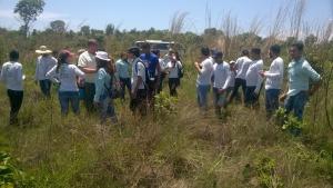 A visita serviu de aula prática para os estudantes da disciplina de Silvicultura do IFTO