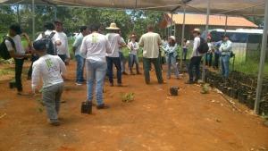 A equipe técnica da unidade de conservação relatou os procedimentos relativos à produção e plantio