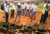 A visita repassou aos alunos do IFTO,  informações sobre a importância da  restauração e proteção ambiental
