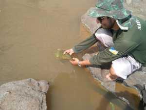 Paralelo ao trabalho de fiscalização, os profissionais do Naturatins ainda realizaram ações de orientação e educação ambiental