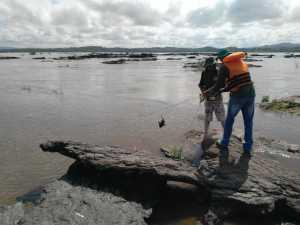Redes foram recolhidas nos rios Araguaia, Tocantins e afluentes na região de Araguaína