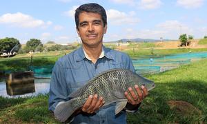 O presidente da Peixe BR, Francisco Medeiros, afirmou que o Tocantins tem tudo para despontar como um dos estados referência na produção da tilápia no Brasil