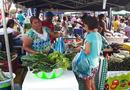 Dona Neci Gonçalves viu a venda e a renda aumentarem com a participação na feira_130x90.jpg