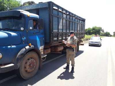 Efetivo da Operação foi orientado a solicitar documento que regulariza o trasporte de gado.