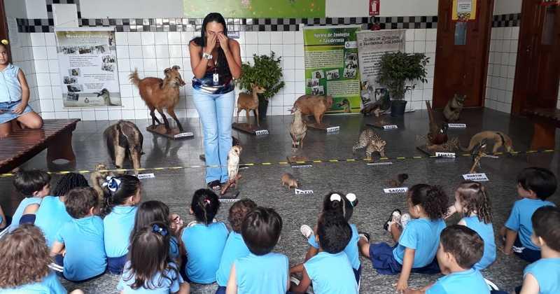 Colégio desenvolve projeto sobre cuidados com os animais