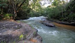 Com o tema A água é uma só, atividades vão abordar a importância da proteção dos mananciais e da coibição de crimes ambientais nos cursos d'água e matas ciliares