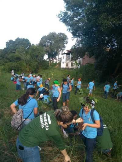 Equipe realiza plantio de árvores às margens do rio Pombinhas