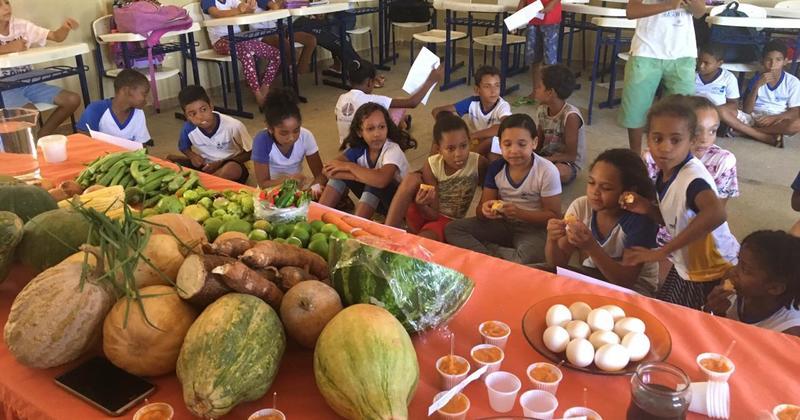 Os frutos da horta são expostos e vendidos durante a Feira da Agricultura Familiar