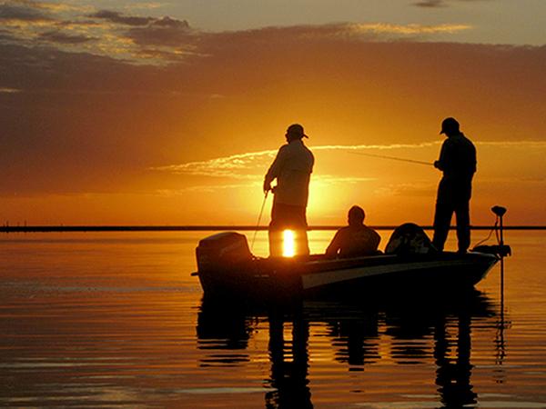 Para validar a carteira de pesca emitida on-line basta juntar o comprovante de pagamento da taxa