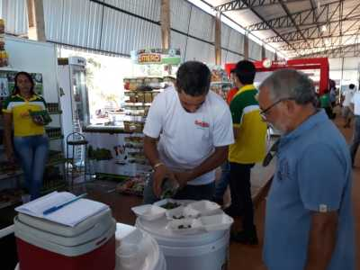 Empresa de temperos e petiscos lança produtos na Agrotins para conquistar novos mercados    3 anexos