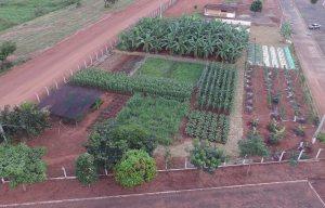 O Ruraltins estará presente na FEAPA em uma área de 2.000m²
