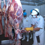 Carne do Tocantins é exportada para 30 países e atende as mais rígidas normas de sanidade